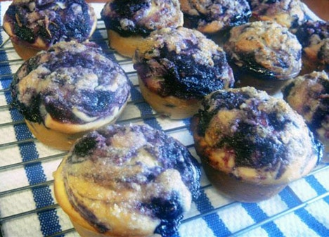 The Best Blueberry Muffin recipe…ever!