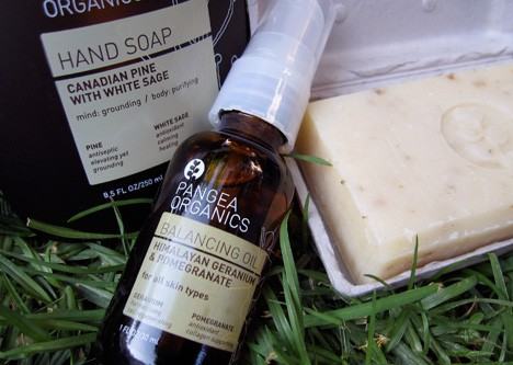Pangea Organics – planting the seeds for great skin