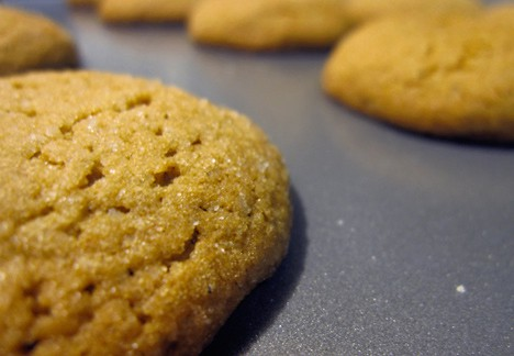 Cookie part 2 Holiday Sweets & Treats   Recipe Round Up