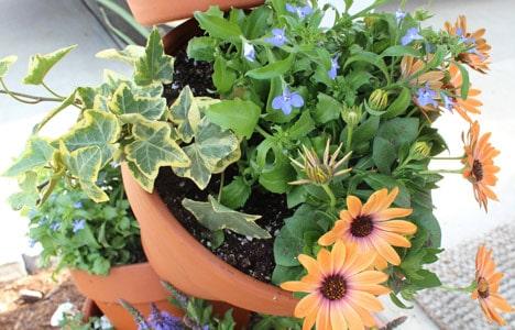 9614 DIY Garden Project: Topsy Turvy Flower Planter