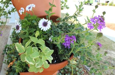 9617 DIY Garden Project: Topsy Turvy Flower Planter