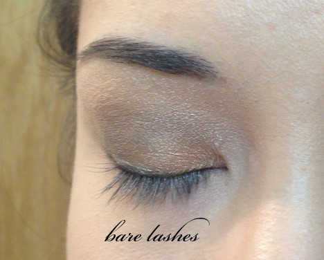 TooFacedBetterThan6 Too Faced Better Than False Lashes   swatches and review