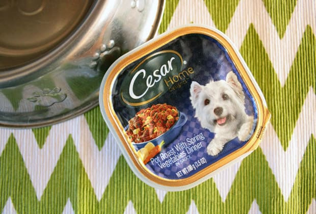 Cesar Home delights small dog food Sept 15 C Love your little dogs? Give them CESAR® Home Delights™