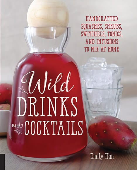 wild drinks and cocktails book 2015 Gift Guide: Cocktail Aficionado