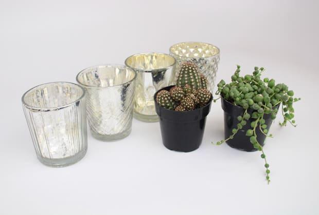 Easy-DIY-plant-place-settings-2