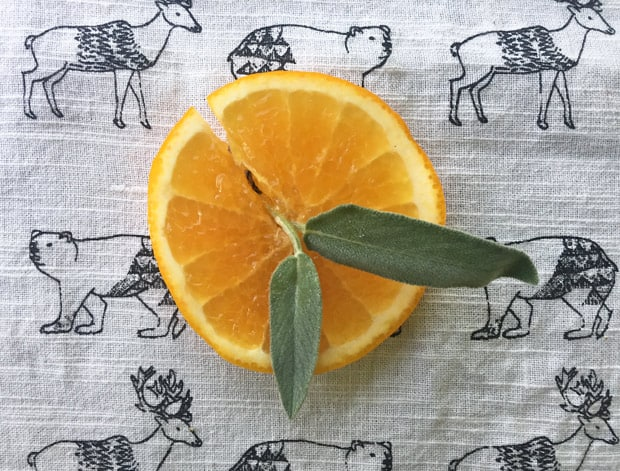 thanksgiving-cocktail-recipe-sage-orange