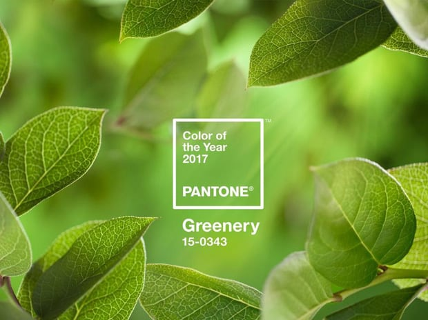 PANTONE Color of the Year 2017 Greenery Pantone 2017 Color of the Year...are you into it?