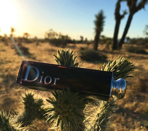 Summer must-have: Dior Addict Lacquer Stick in Rolling