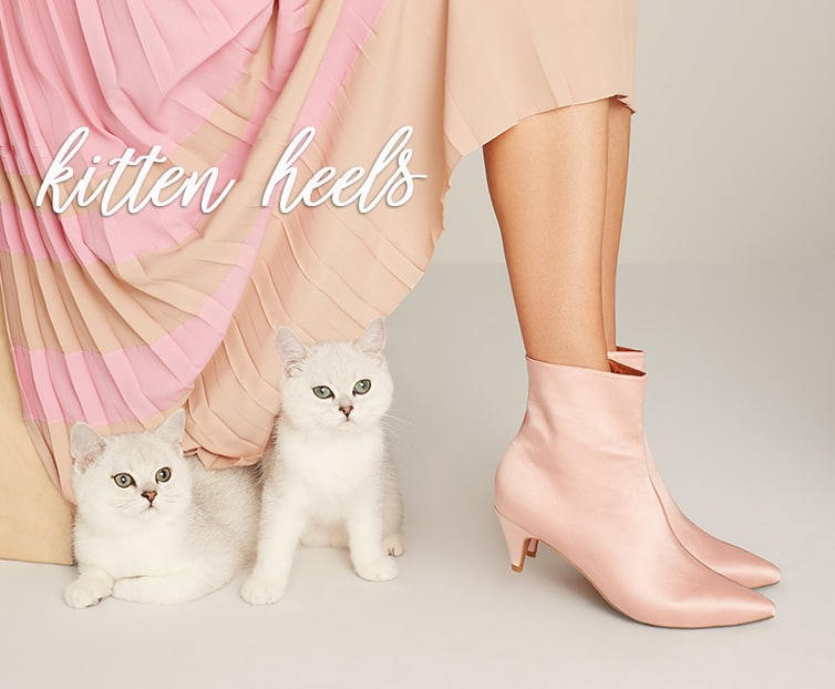 cats with affordable kitten heels